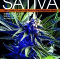 Cannabis Sativa, Vol. 1: The Essential Guide to the World's Finest Marijuana Strains