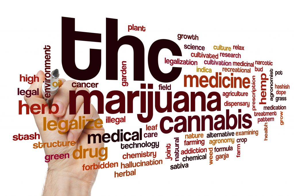 THC word cloud concept