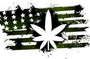 Seattle-Hempfest-United-States-Of-Cannabis