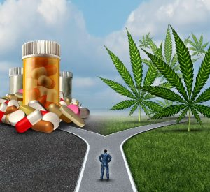 Seattle-Hempfest-Blog-Cannabis-vs-pharma